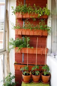 301 moved permanently - Groenten in potten op balkons ...