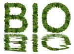 bioblog bioletters