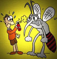 Afbeeldingsresultaat voor gif muggen