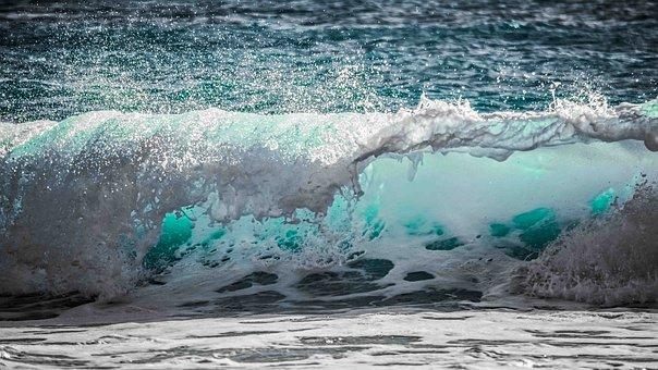 water en detox