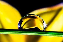 water op blad