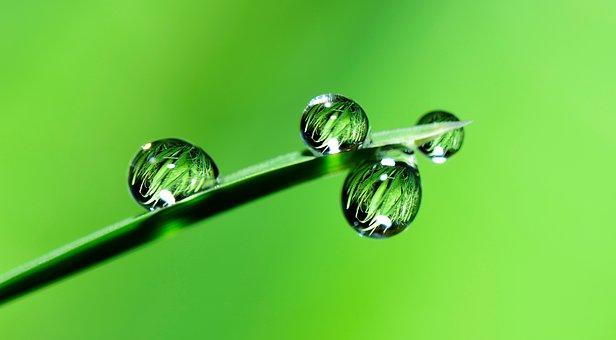 detox en water