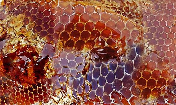 honing-en-haar-werking-op-velerlei-gebied