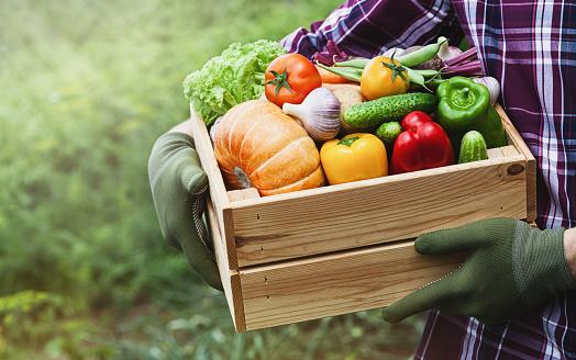 voedingswaarden-groenten-en-fruit