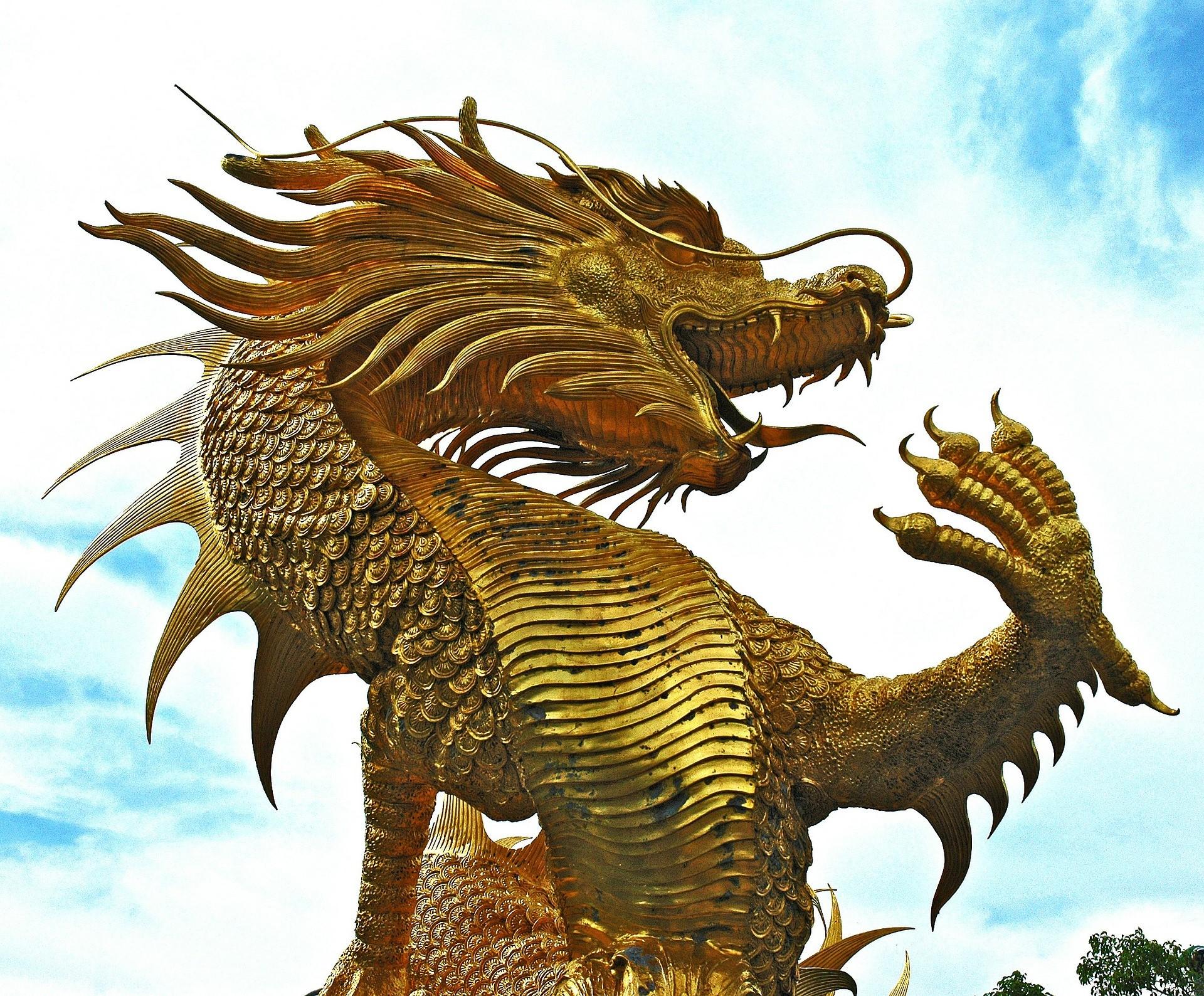 Draak dragon
