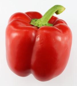 zomer paprika rood